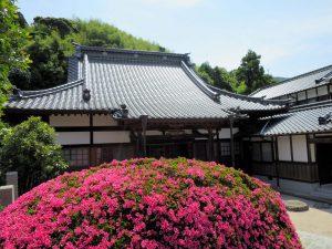 教蓮寺-本堂