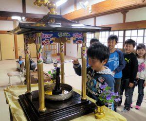 教蓮寺-花祭り